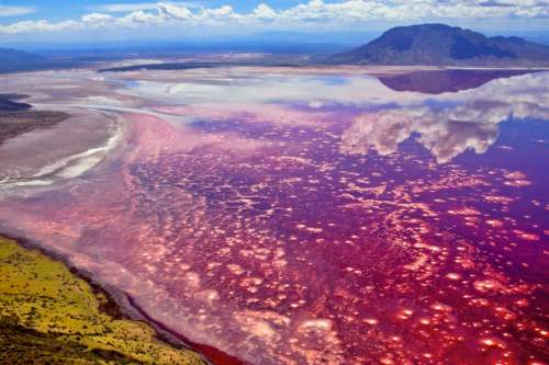 Natron lake, Tanzania