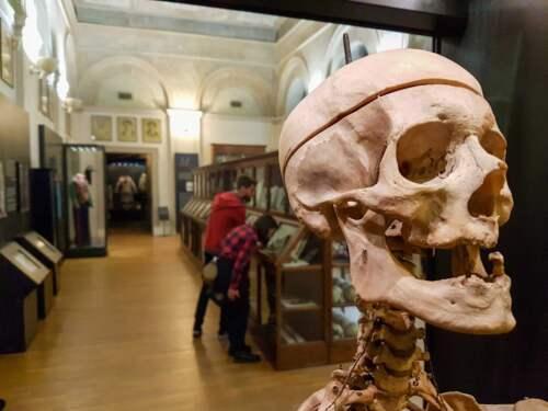 Antropológia, Turín, Taliansko