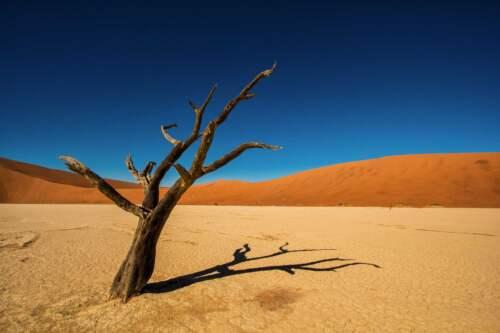 Púšť, Namíbia