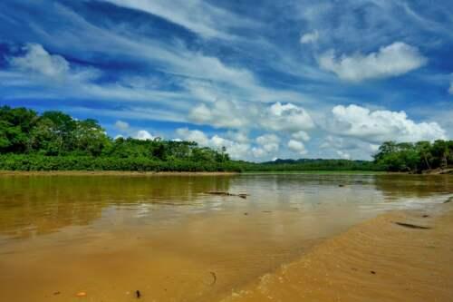 Prales v Paname
