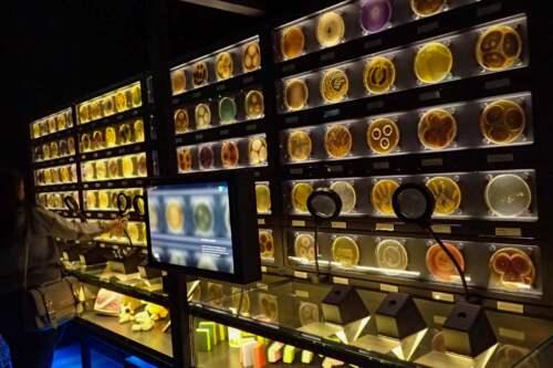 múzeum, Amsterdam, Holandsko